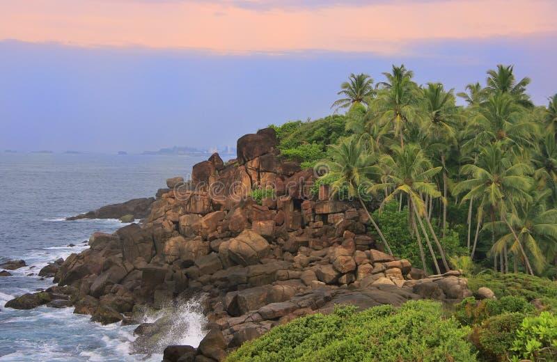 Stenig kust med palmträd, Unawatuna, Sri Lanka royaltyfri fotografi