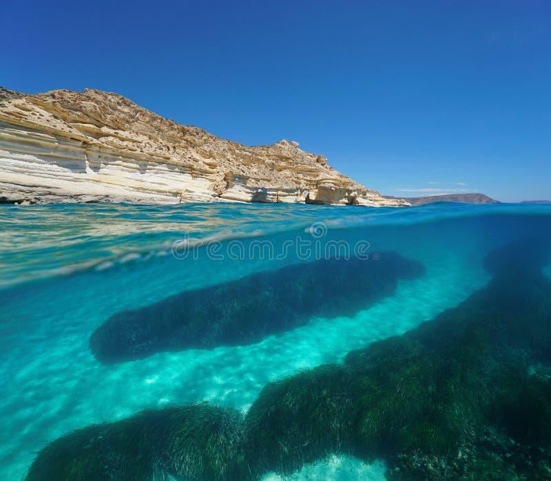 Stenig kust med seagrass och undervattens- sand royaltyfri fotografi