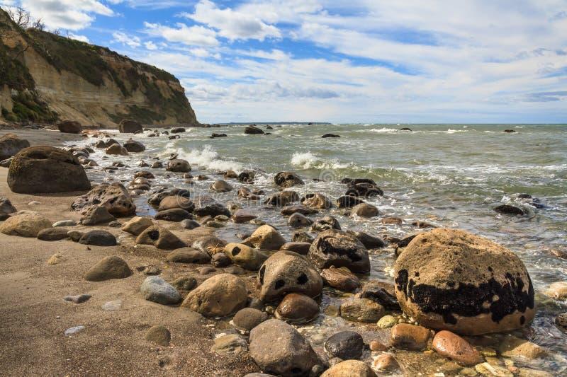 Stenig kustlinje i fjärden av överflöd, Nya Zeeland royaltyfri fotografi