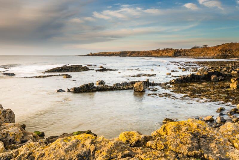 Stenig kustlinje på Howick royaltyfri foto