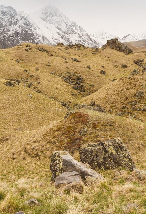 Stenig lutning för berg som är dold med gräs, med snöig maxima i bakgrunden arkivbilder