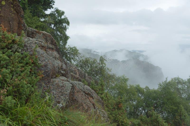 Stenig massiv för dimmigt landskap med enbuskar med en dimmig dal och låga moln i bergen av norden royaltyfria foton
