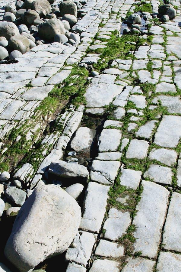 stenig strand 6 royaltyfri fotografi