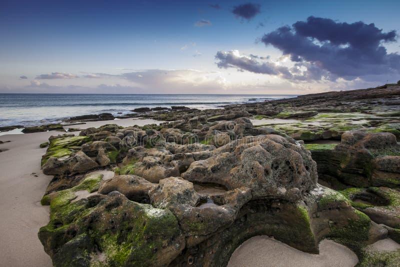 stenig strand fotografering för bildbyråer