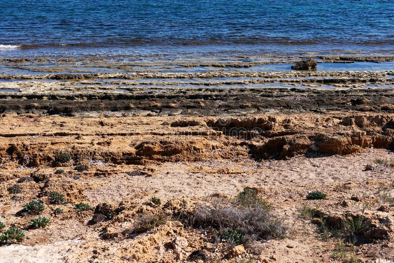 Stenig strand av Torrevieja Costa Blanca spain fotografering för bildbyråer