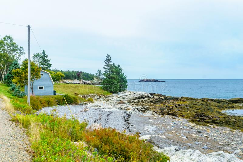 Stenig strand i skopahamnen, New Brunswick fotografering för bildbyråer