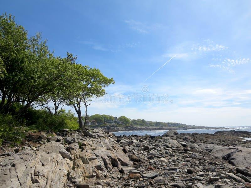 Stenig strand med träd på den Ryefield lilla viken med moln i himmelnollan arkivfoto