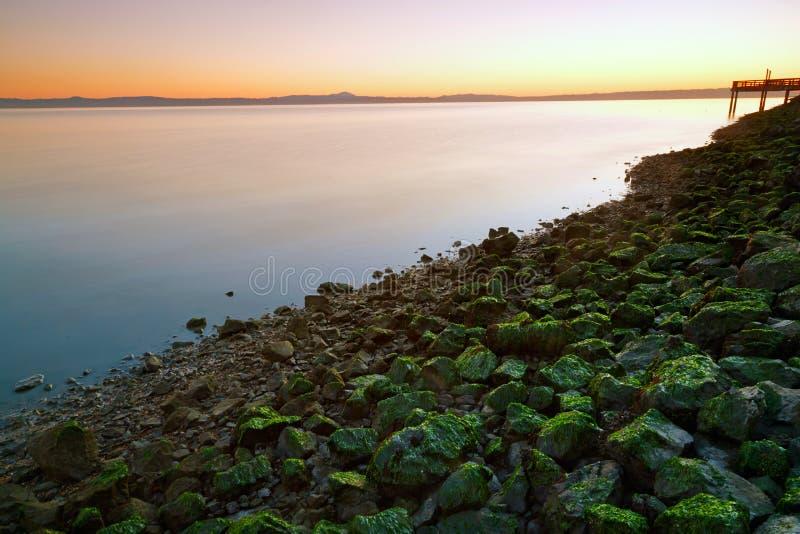 Stenig strand, San Francisco Bay arkivbild