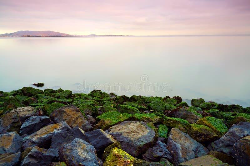 Stenig strand, San Francisco Bay royaltyfri bild