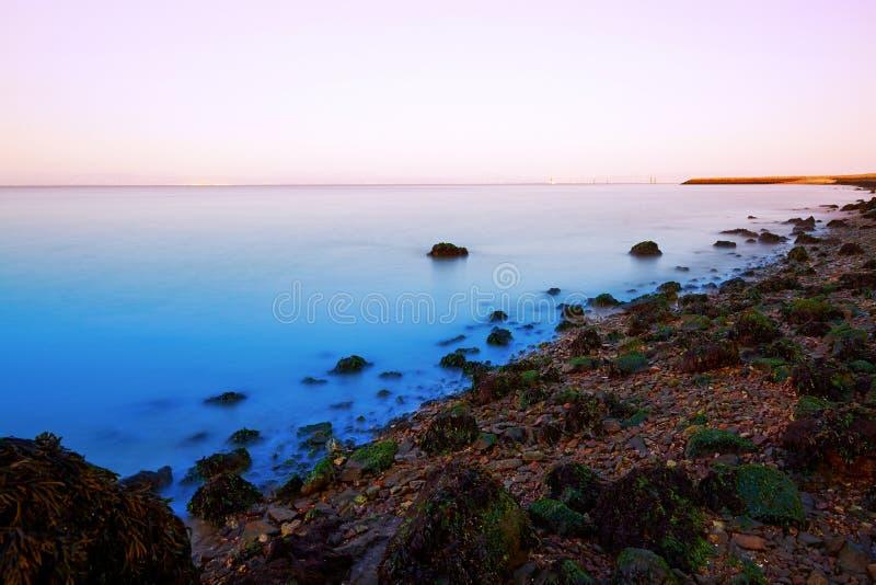 Stenig strand, San Francisco Bay royaltyfria foton