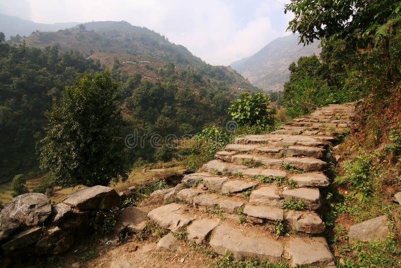 stenig trappuppgångtrail för berg royaltyfria foton