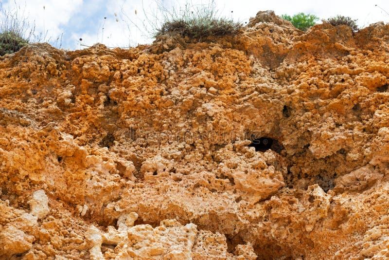 Steniga leraklippor på stranden arkivbild