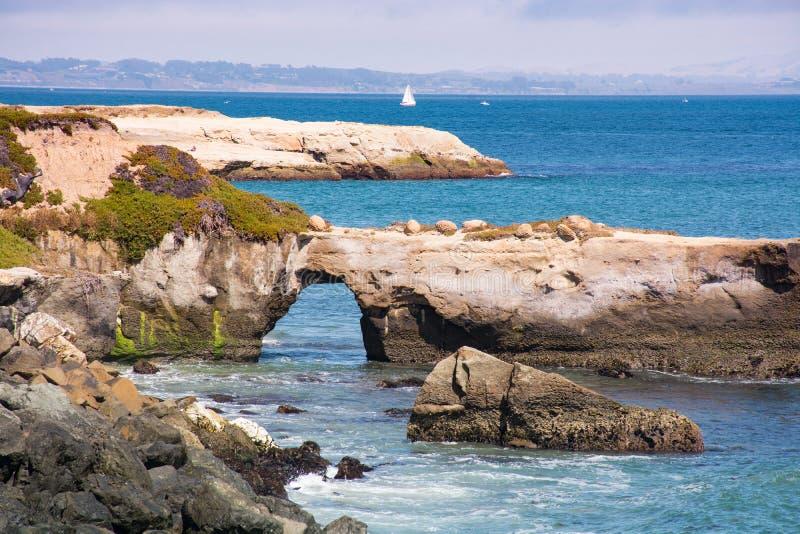 Stenigt kust- landskap i Santa Cruz, Kalifornien arkivfoto