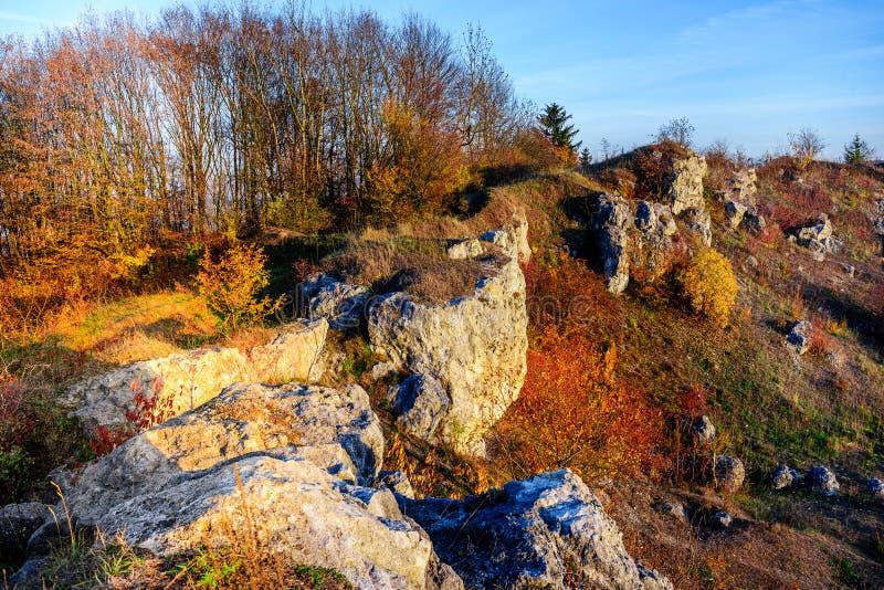 Stenigt landskap under höst Härligt landskap med stenen, skogen och dimma Höstlandskap för dimmig afton Landskapet med vaggar arkivbilder