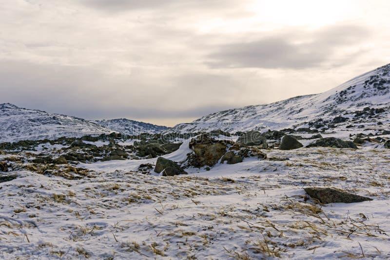 Stenigt snöig arktiskt landskap arkivbild