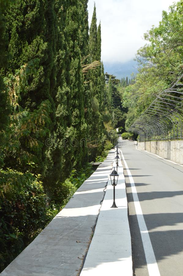 Stenlagd väg med lyktor längs cypressgränden i parkera på en solig sommardag arkivbild