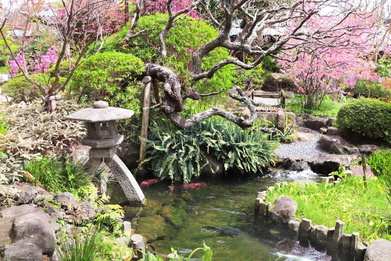 Stenlykta och damm i den traditionella japanska trädgården, Kamakura, Japan royaltyfri bild