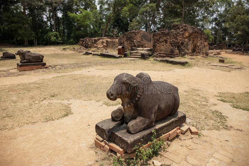 Stenmonument för forntida tempel i det Angkor Wat komplexet, Cambodja Staty för sakral ko Nandi tjur arkivbild