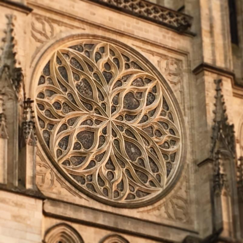Stenrosace i Bordeaux, Frankrike royaltyfria bilder