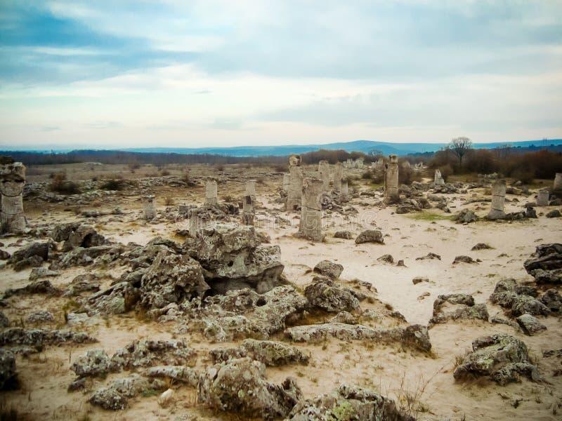 Stenskog arkivfoto
