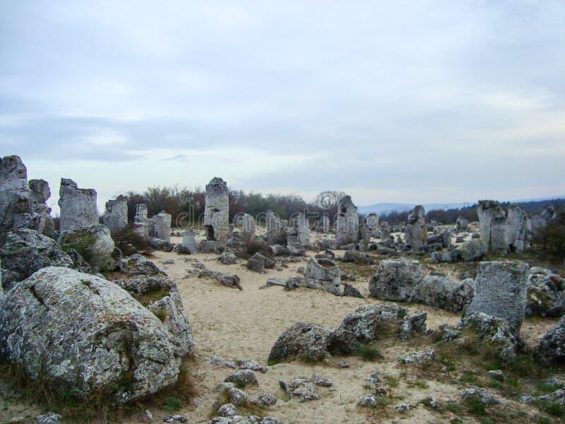 Stenskog arkivbild