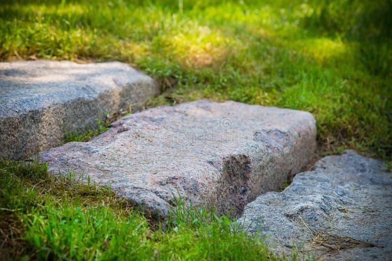 Stenstegs nedbrytning av grått i parken. Texturera eller bakgrund royaltyfria foton
