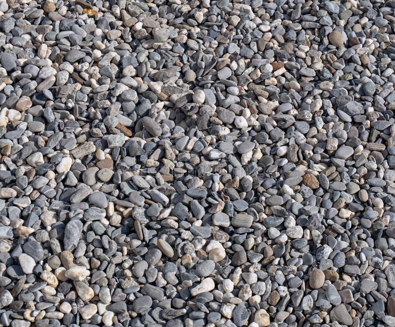 Stentextur - grus av små grå färg- och vitrundastenar, abstrakt bakgrundsmodell arkivbild