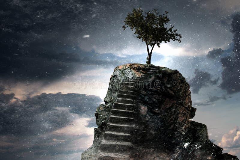 Stenväg som överst går upp, och träd Blandat massmedia fotografering för bildbyråer