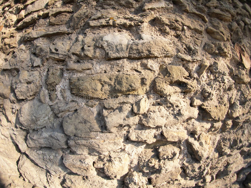 Stenvägg av de stora busestengrå färgerna royaltyfri fotografi
