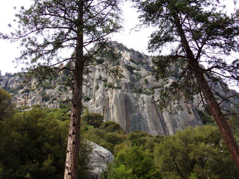 Stenvägg av ett berg i den Yosemite nationalparken, Sierra Nevada, Kalifornien royaltyfria bilder