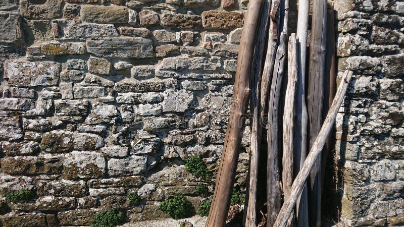 Stenvägg och torra journaler royaltyfri foto