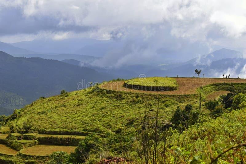 Mountain steps for plantation stock photos