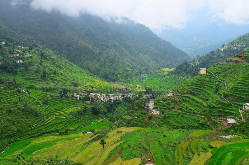 Step Farms in Himalayan Valley in Uttarakhand, India. This photograph is captured on the scenic highway from Uttarkashi to Rudraprayag, Uttarakhand, India. The stock photography