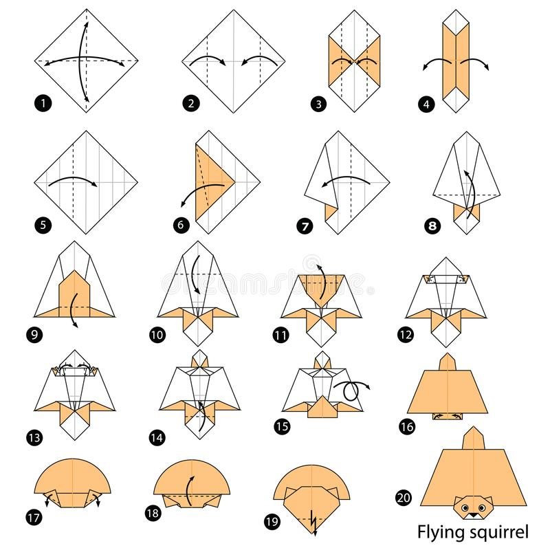 Download Step By Instructions How To Make Origami A Flying Squirrel Stock Vector