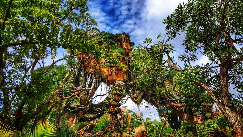 Pandora`s Mountains-The World of Avatar at Disney`s Animal Kingdom. Step into Pandora, the World of Avatar inside Disney`s Animal Kingdom Resort. You will feel stock image