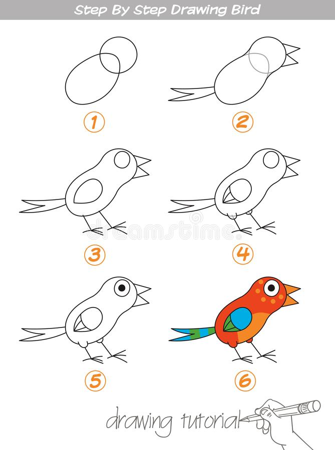 Step by step drawing Bird. Drawing tutorial. Step by step drawing Bird. Easy to drawing Bird for Children. Funny cartoon character. Vector illustration stock illustration