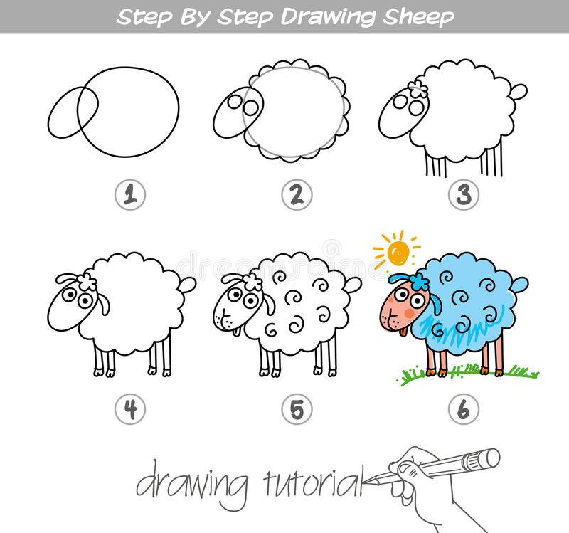 Step by step drawing Sheep. Drawing tutorial. Step by step drawing Sheep. Easy to drawing Sheep for Children. Funny cartoon character. Vector illustration vector illustration