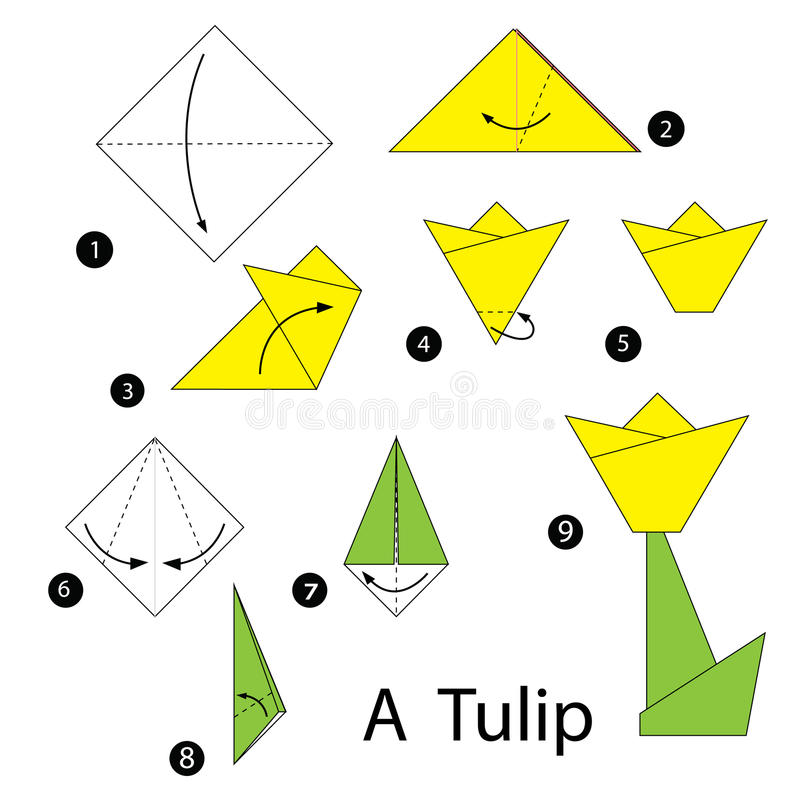 Step by step instructions how to make origami tulip stock download step by step instructions how to make origami tulip stock illustration illustration of mightylinksfo