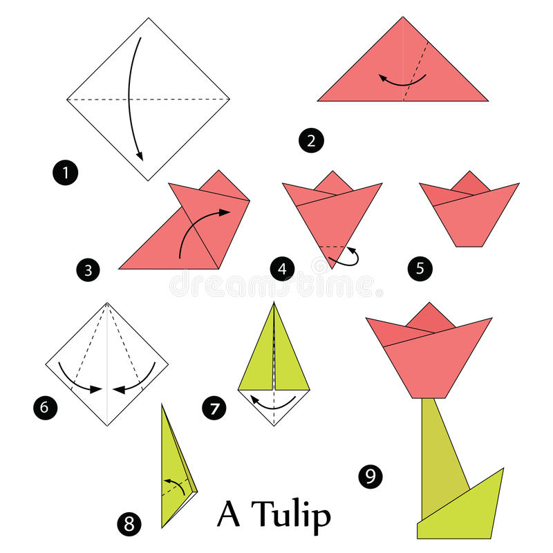 step by step instructions how to make origami a tulip