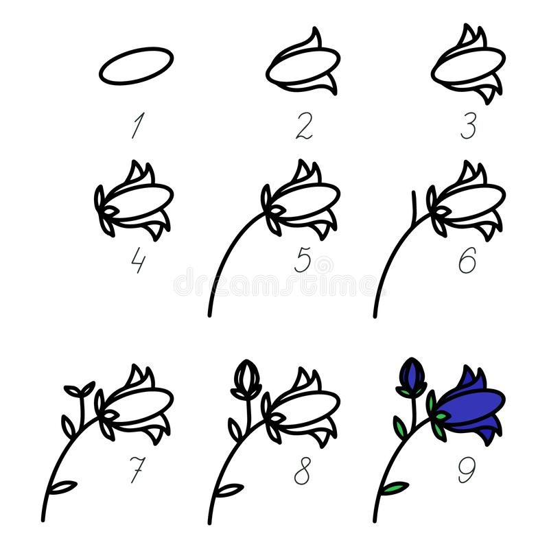 Step by step process drawn flower. How to drawn art vector for beginner. Brush illustration children drawing game. Kid playing royalty free illustration