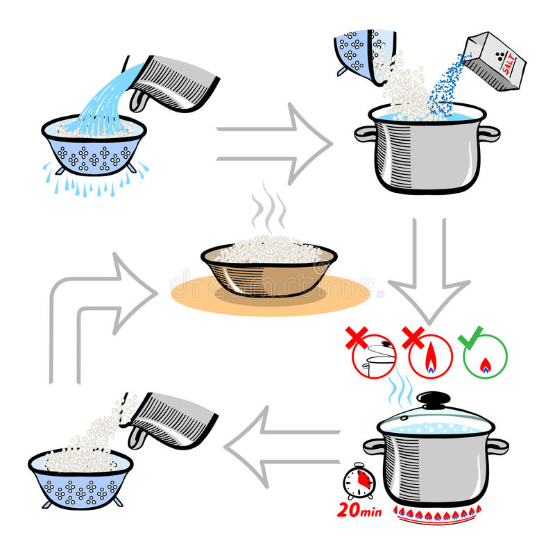 Step by step recipe infographic for cooking rice vector illustration