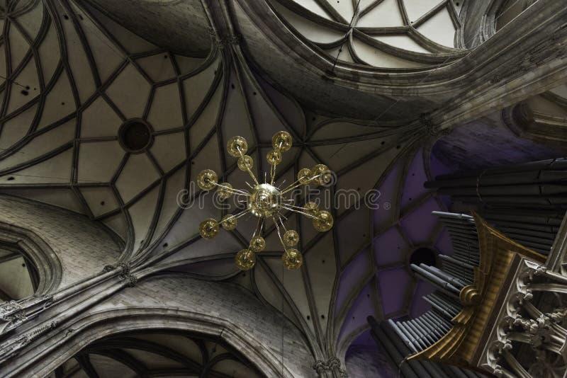 Stephens собор St, вена стоковое фото rf