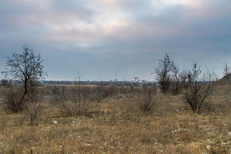Steppa di Taurian vicino al mare di Azov immagine stock libera da diritti