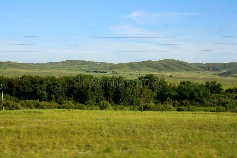 steppe stockbild