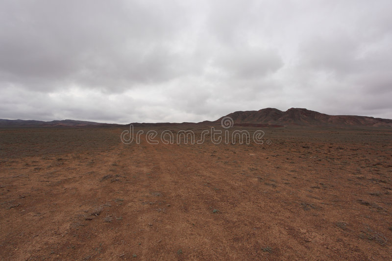 steppe royaltyfria bilder