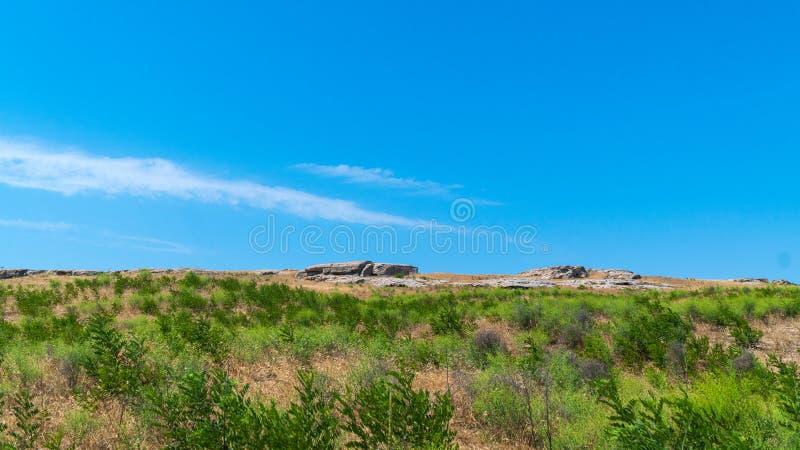 Steppe d'été avec l'épine de chameau photos libres de droits