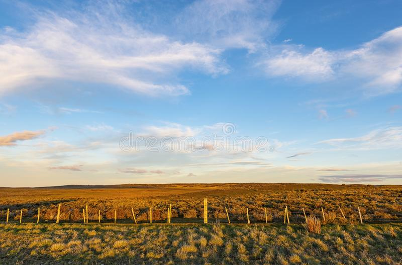Landscape of the Steppe in Patagonia, Chile royalty free stock photos