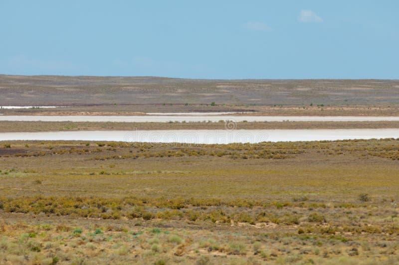 steppe Humidité déboisée et pauvre et secteur généralement plat avec le gra images libres de droits