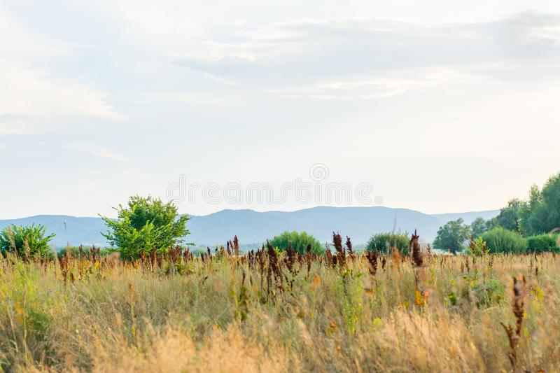 Steppe landscape on the bank of the river Sok Samara region. Russia. View of the Zhiguli Mountains royalty free stock photography