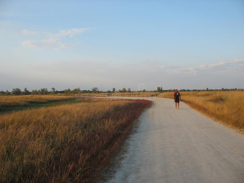 On the steppe roads stock image